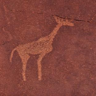 giraffe2c_twyfelfontein