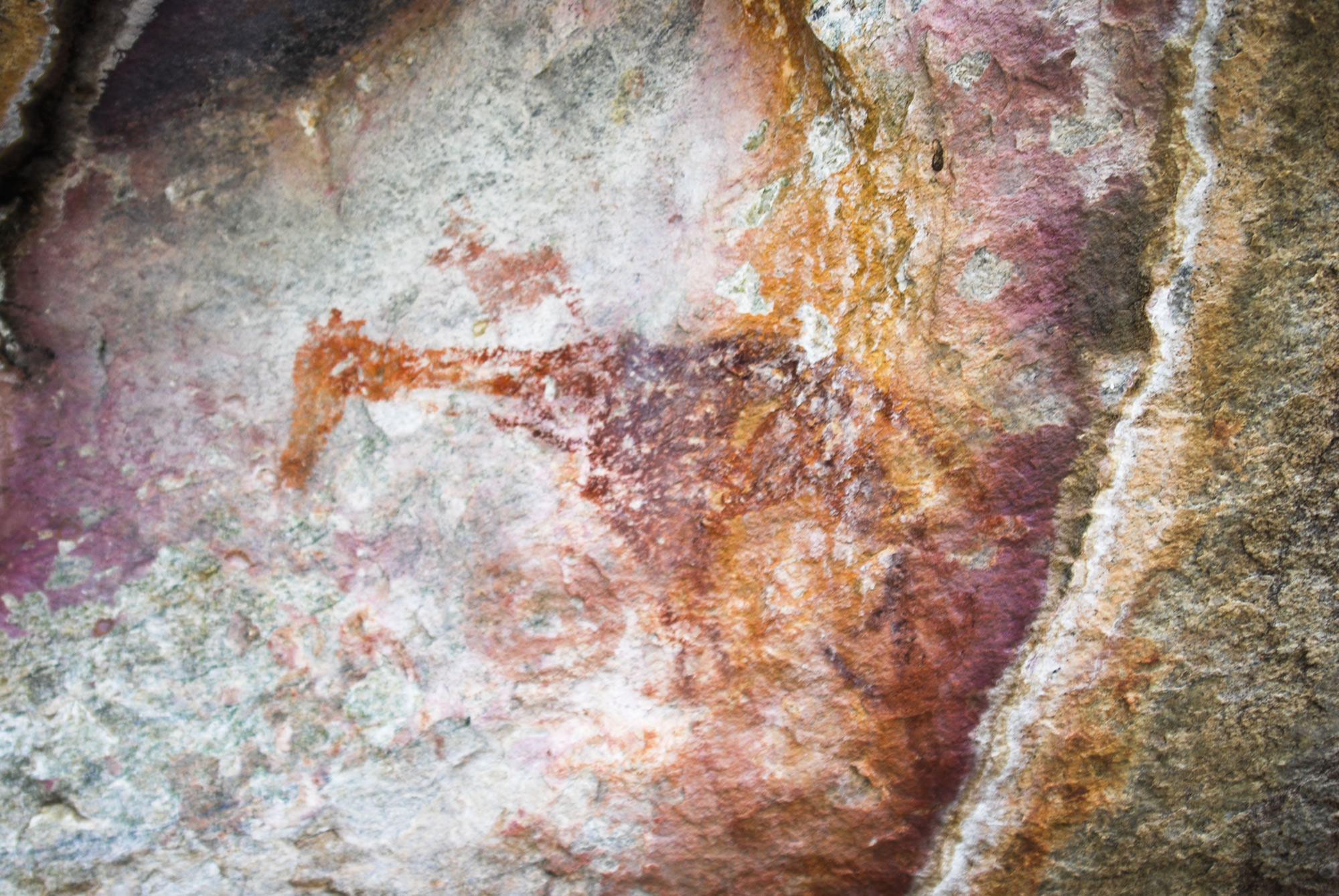 giraffe_rock_art_painting_tsodilo