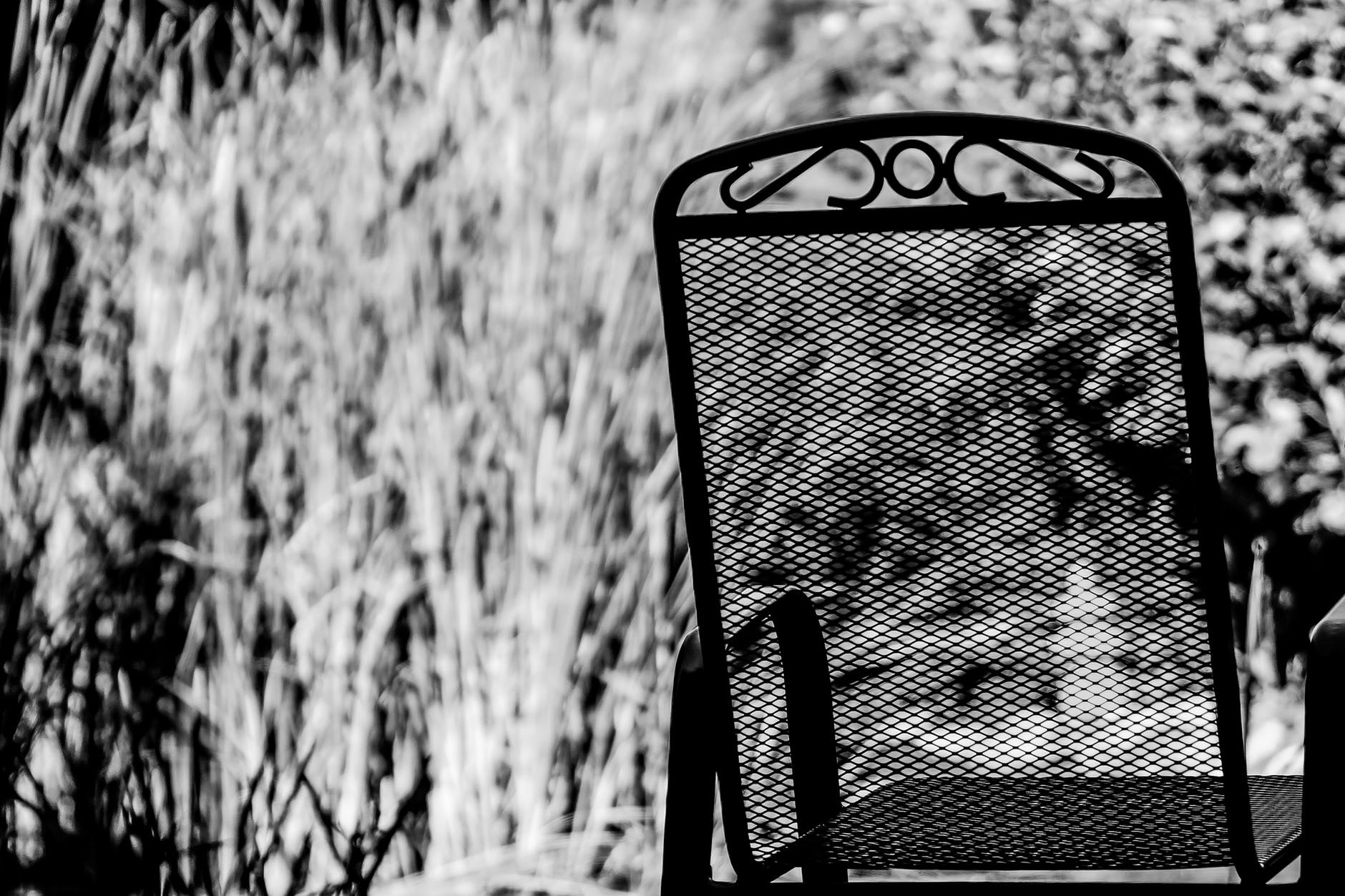 black and white chair furniture grass